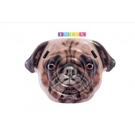 Flotador Dog face