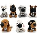 Colección Perros de Peluche